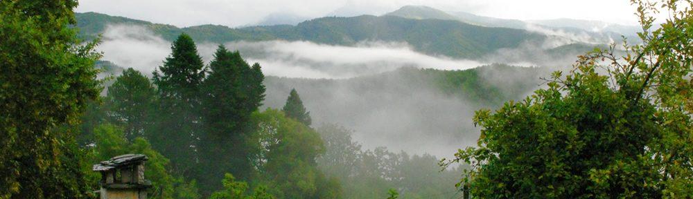 Φθινοπωρινή ομίχλη στο Δίλοφο στα Ζαγοροχώρια
