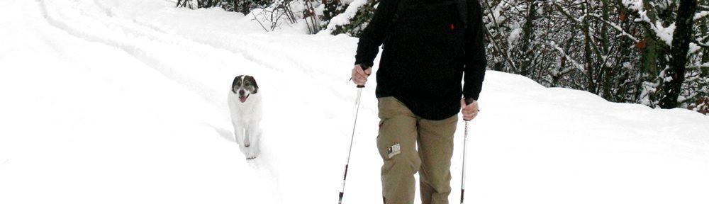 Χιονορακέτες στα χιονισμένα Ζαγόρια