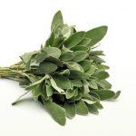 Φασκόμηλο, πολυετές, θαμνώδες, με πολυάριθμα κλαδιά, ύψους μέχρι μισό μέτρο, βρίσκεται σε όλες τις περιοχές της Ελλάδας κυρίως σε ξηρούς και πετρώδεις τόπους. Τα φύλλα του είναι επιμήκη και παχιά, χρώματος λευκοπράσινου. Τα άνθη του φύονται κατά σπονδύλους, είναι χρώματος μοβ και ανθίζουν από το Μάιο ως τον Ιούνιο
