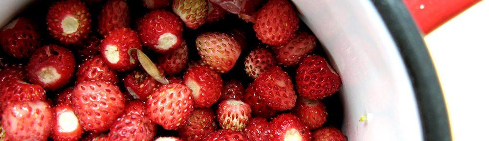 Άγριες φράουλες από τα Ζαγοροχώρια