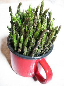 Άγρια σπαράγγια (Asparagus officinalis) - Ζαγοροχώρια