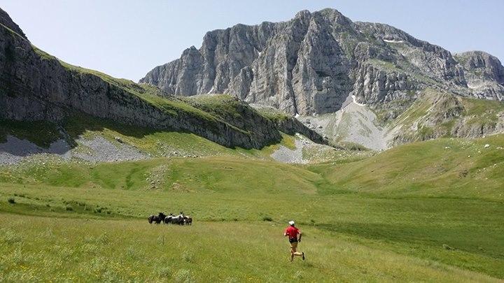 The North Face® Zagori Mountain Running, ο κορυφαίος ελληνικός αγώνας ορεινού τρεξίματος, έρχεται για το 2015 στις 25 και 26 Ιουλίου. Αθλητές και λάτρεις της φύσης από όλο τον κόσμο, θα έχουν την ευκαιρία να τρέξουν στους αγώνες των 80χλμ, 42χλμ, 21χλμ και 10χλμ, δοκιμάζοντας τις αντοχές τους στα πανέμορφα αλλά απαιτητικά τοπία τής Τύμφης και τού Ζαγορίου