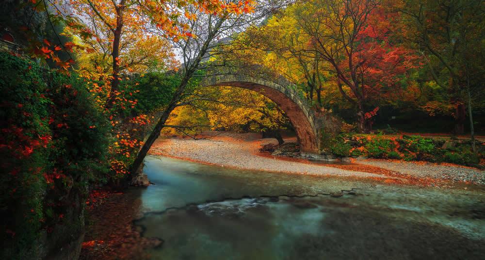Πέτρινο τοξωτό γεφύρι, Ζαγοροχώρια | Αλέξανδρος Μαλαπέτσας