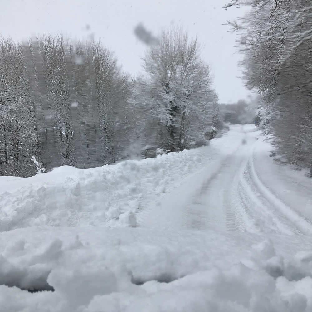 Χιόνια στα Ζαγοροχώρια!